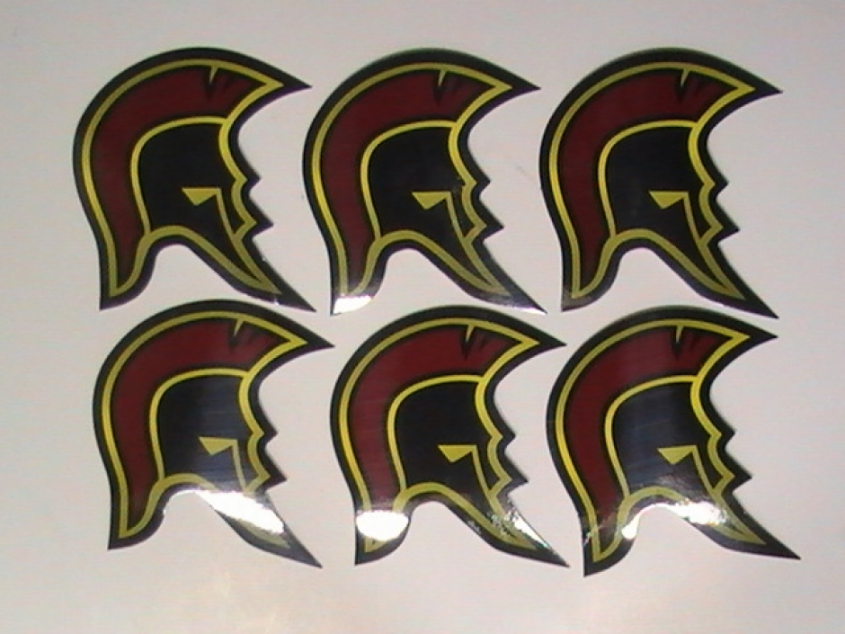 Skateboard Helmet Stickers